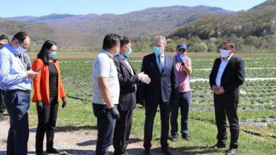 Photo of Veliki odziv poljoprivrednika u FBiH, već stiglo blizu 17.000 aplikacija