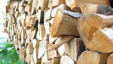 Photo of Građani ogrjev kupuju u posljednji čas i na rate, metar drva košta 89 KM