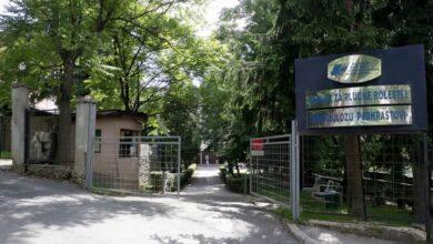 Photo of KCUS: Ponovo rast zaraženih u Sarajevu, jedan pacijent preminuo