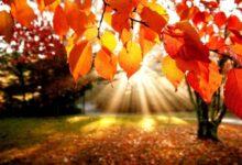 Photo of Danas počinje jesen